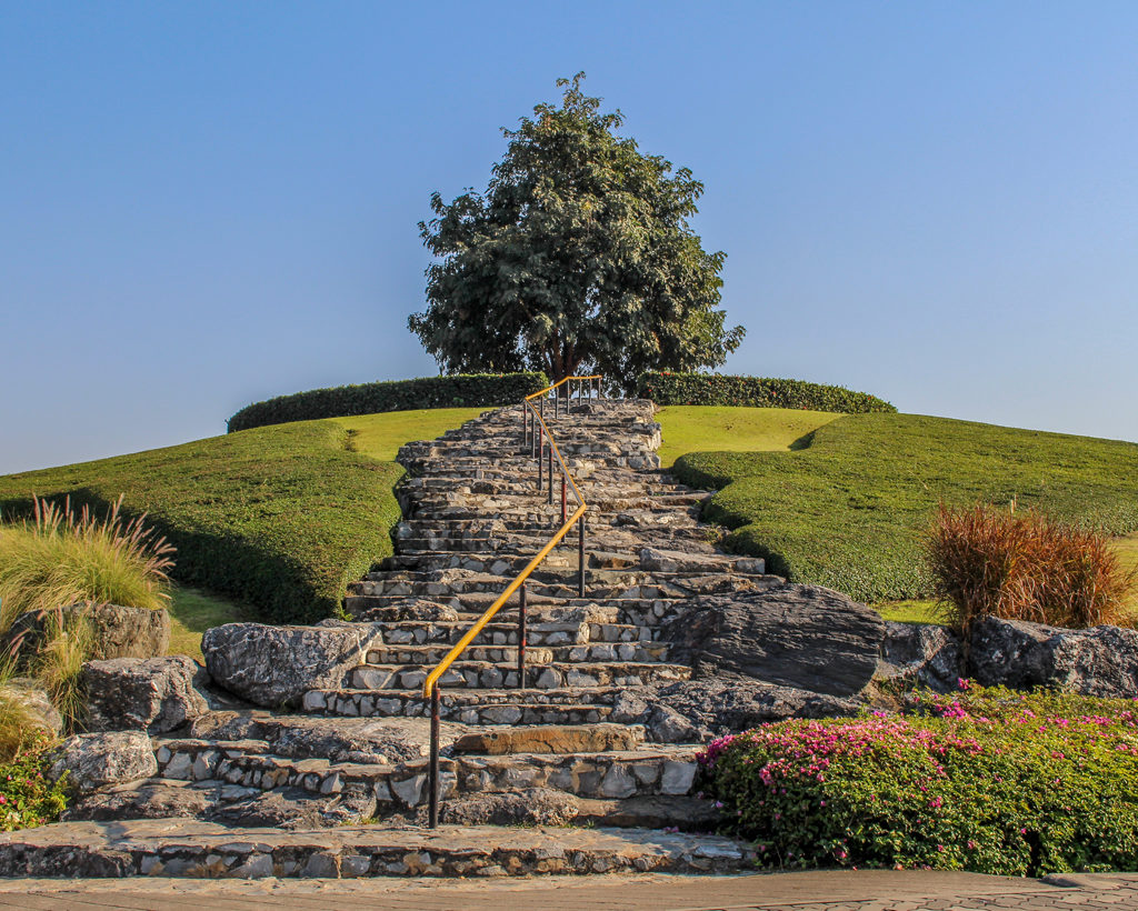I loved the symmetry of this tree atop a hill we found by the Royal Park Rajapruek, Chiang Mai, Thailand.